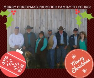 merry-christmas-from-our-family-to-yours